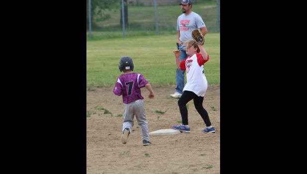 Bison Youth Baseball